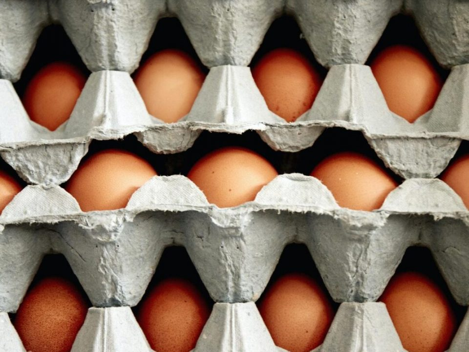Trays of organic free range hen's eggs stacked up, with eggs of different sizes and colours.